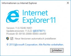 Popup mit Info zur Internetexplorer Version