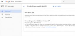 Die Google Maps Javascript API in der Bibliothek aktivieren