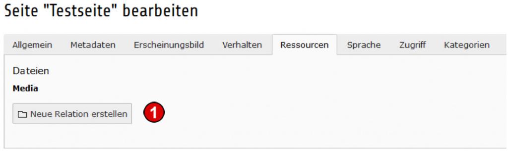TYPO3 Handbuch v. 8 LTS - Seite bearbeiten - Reiter Ressourcen