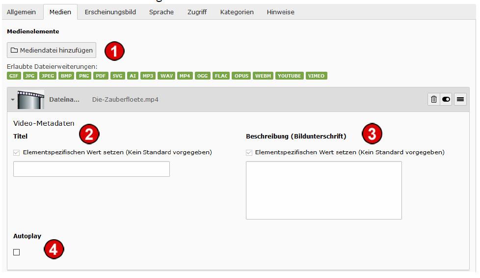 TYPO3 v8 Handbuch Inhaltstyp Medien