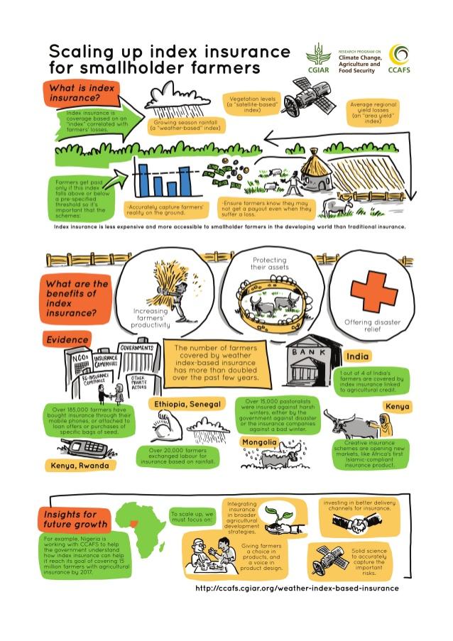 Infografik Versicherungen